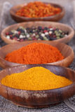 Different  spices Stock Image