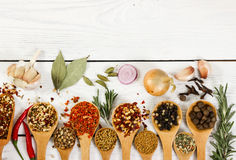 Different spices in wooden spoon. Top view. Royalty Free Stock Photo