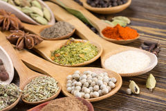 Different spices in wooden spoons Royalty Free Stock Photography
