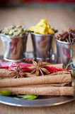 Different spices for your kitchen closeup Royalty Free Stock Photography