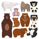 Different style bears vector illustration. Set of different style bears isolated. Brown, white, panda and mammal teddy grizzly. Funny happy collection cartoon Stock Photos