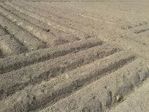 Different style field with lines made by soil. royalty free stock image