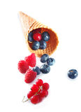 Different summer fruits Stock Photos