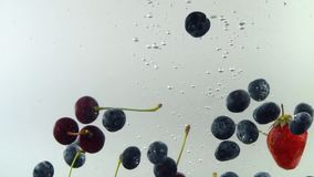 Different tasty fruits fall into the water in slow motion with white background. Blueberries strawberry cherry. stock footage