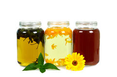 Different tea drinks in the jars  on white Stock Photography