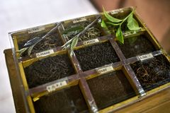 Different tea sorts. Wooden container with different tea sorts on the blurry background. Few green tea leaves are lying on it. Closeup. Horizontal royalty free stock photo