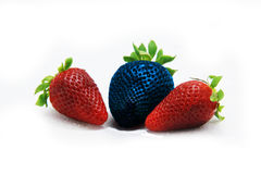 Different than the rest alone blue strawberry.Concept for genetically modified food Stock Photography