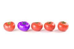 Different than the rest, tomatoes. Stock Photos