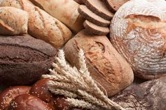 Different types of bread with ears of wheat. royalty free stock images