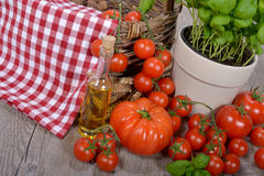 Different tomatoes with olive oil Stock Images