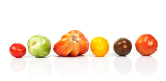 Different tomatoes shapes and colors Stock Photos