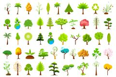 Different Tree Stock Image