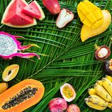 Different Tropical Fruits Raw Eating Diet Concept royalty free stock image