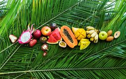Different Tropical Fruits Raw Eating Diet Concept royalty free stock photos