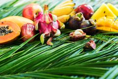 Different Tropical Fruits Raw Eating Diet Concept stock photography