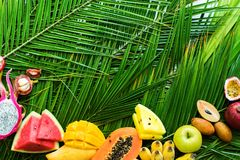 Different Tropical Fruits Raw Eating Diet Concept stock images