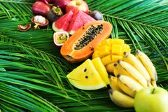 Different Tropical Fruits Raw Eating Diet Concept. Food Green Palm Leaves Background High Resolution Square Copy Space royalty free stock photos