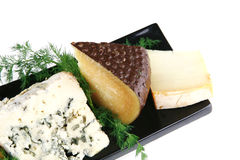 Different type of aged cheeses Stock Images
