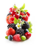 Different type of berry fruits isolated Royalty Free Stock Photo