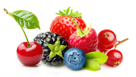 Different type of berry fruits isolated Royalty Free Stock Photography