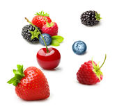 Different type of berry fruits isolated Royalty Free Stock Photos