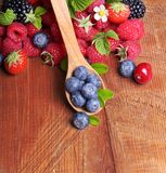 Different type of berry fruits Stock Images
