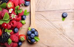 Different type of berry fruits Stock Image