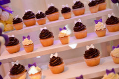 Different type of cupcakes Royalty Free Stock Photos