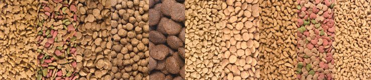 Different type of dog and cat food, the dog is on the top.  royalty free stock photos