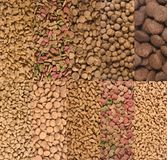Different type of dog and cat food, the dog is on the top.  royalty free stock image