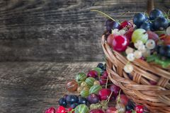 Different type of fresh berry fruits in the bucket. On wooden background royalty free stock photo