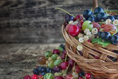 Different type of fresh berry fruits in the bucket. On wooden background stock photos