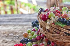 Different type of fresh berry fruits in the bucket. On wooden background royalty free stock photography