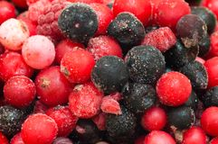 Different type of frozen berries Stock Photos