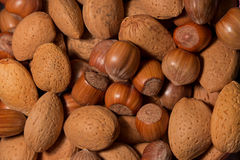 Different type of nuts. (mix Stock Images