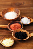 Different type of salt in rustic clay bowls Royalty Free Stock Photography