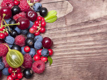 Different type of wild berry fruits Royalty Free Stock Image