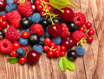 Different type of wild berry fruits Stock Images