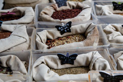 Different types of Assorted Spices Royalty Free Stock Photo