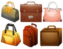 Different types of bags Stock Images