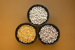 Different types of beans in bowls. Yellow pea, yellow beans, black eye beans. Orange background royalty free stock photo