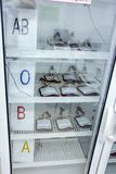 Different types of blood stored in a refrigeration cabinet. The plastic bags with blood stored in the deposit Hospital Royalty Free Stock Photos
