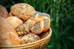 Different types of bread. Basket full of different types of bread royalty free stock image