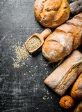 Different types of bread with grain. On dark rustic background stock images