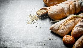 Different types of bread with grain. On dark rustic background royalty free stock photos