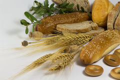 Different types of bread. Poppy. Sprigs of wheat on a white royalty free stock photos