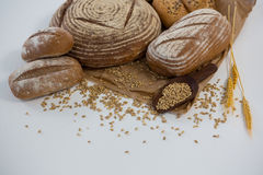 Different types of bread with wheat grains Stock Photos