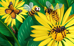 Different types of bugs flying around yellow flowers. Illustration Stock Photo