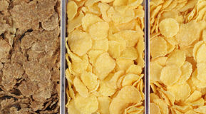 Different types of cereals Stock Photography