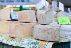 Different types of cheese Stock Images